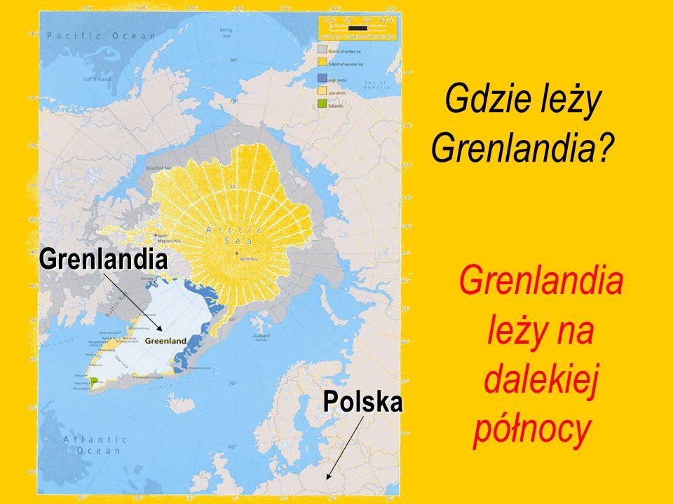 Gdzie leży Grenlandia? Grenlandia leży na dalekiej północyGrenlandia Polska