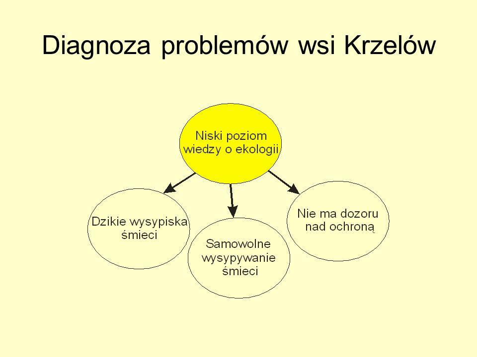 Diagnoza problemów wsi Krzelów