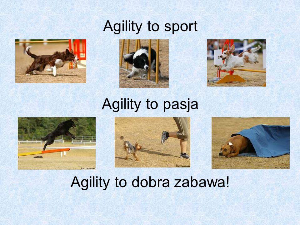 Agility to sport Agility to pasja Agility to dobra zabawa!