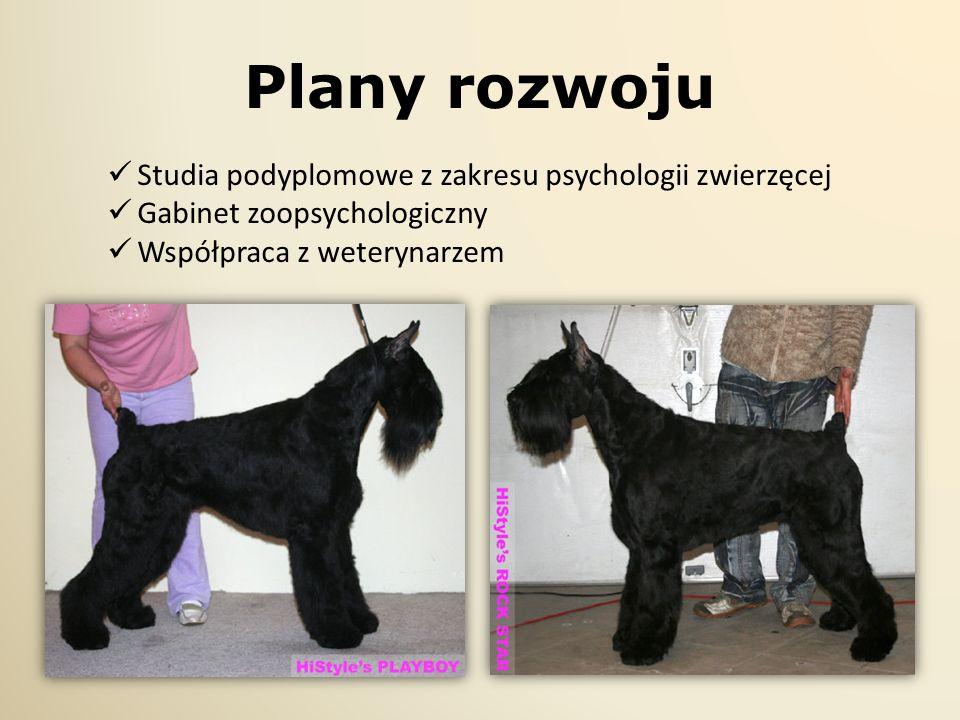 Plany rozwoju Studia podyplomowe z zakresu psychologii zwierzęcej Gabinet zoopsychologiczny Współpraca z weterynarzem