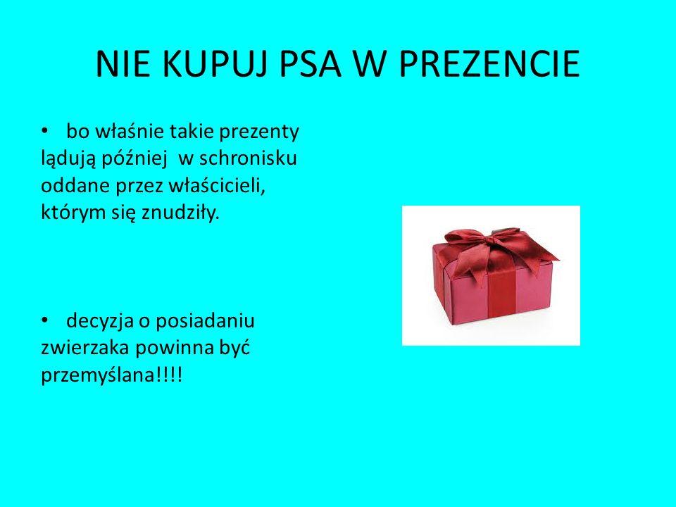 NIE KUPUJ PSA W PREZENCIE bo właśnie takie prezenty lądują później w schronisku oddane przez właścicieli, którym się znudziły. decyzja o posiadaniu zw