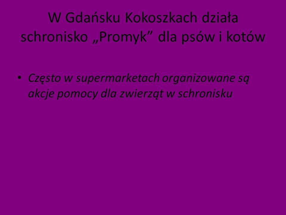 W Gdańsku Kokoszkach działa schronisko Promyk dla psów i kotów Często w supermarketach organizowane są akcje pomocy dla zwierząt w schronisku