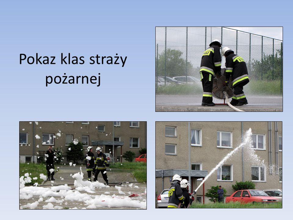 DZIEŃ BEZ PRZEMOCY Funkcjonariusze z placówki Straży Granicznej z Kołobrzegu pokazały, jak wytresowane są psy przez ich przewodników