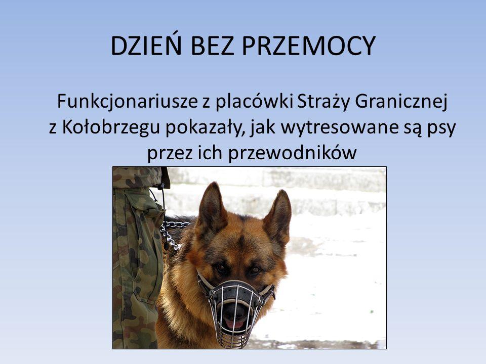 Pokaz posłuszeństwa psa służbowego