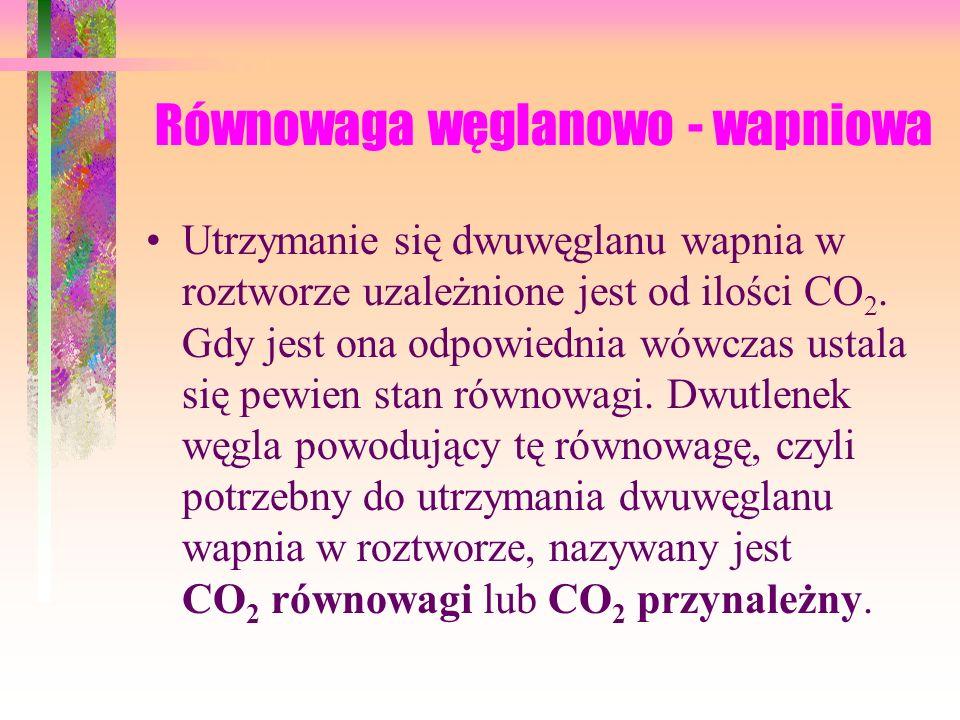 Równowaga węglanowo - wapniowa Utrzymanie się dwuwęglanu wapnia w roztworze uzależnione jest od ilości CO 2.