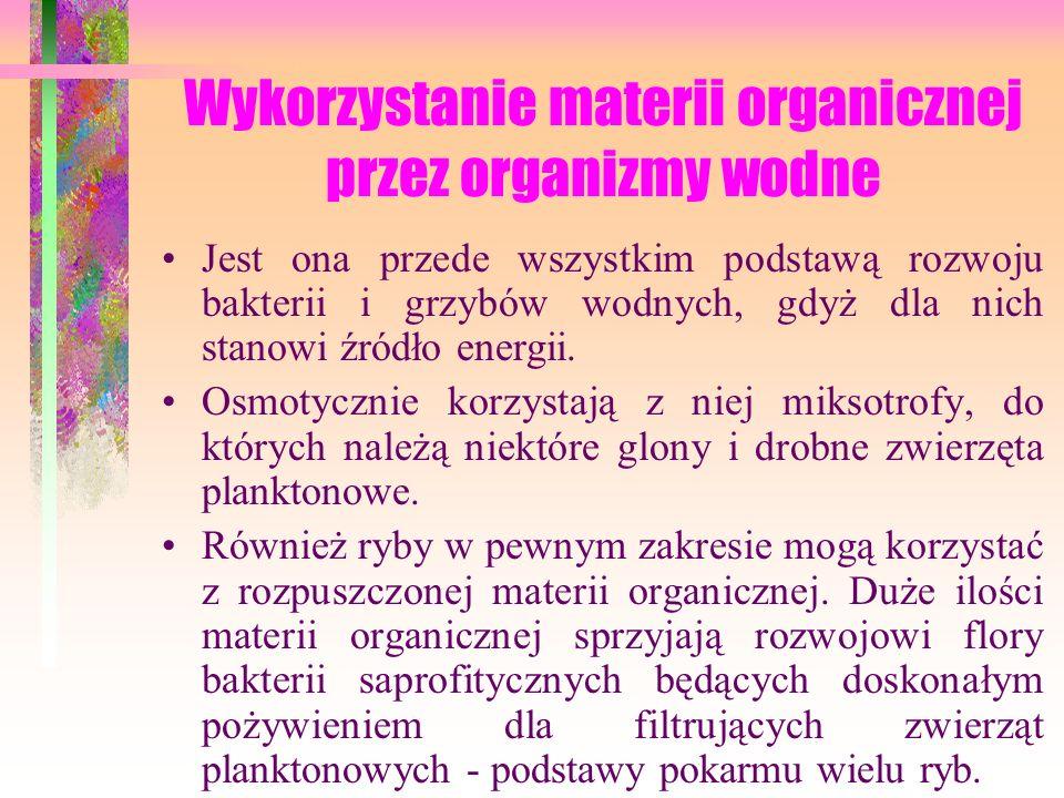 Wykorzystanie materii organicznej przez organizmy wodne Jest ona przede wszystkim podstawą rozwoju bakterii i grzybów wodnych, gdyż dla nich stanowi źródło energii.