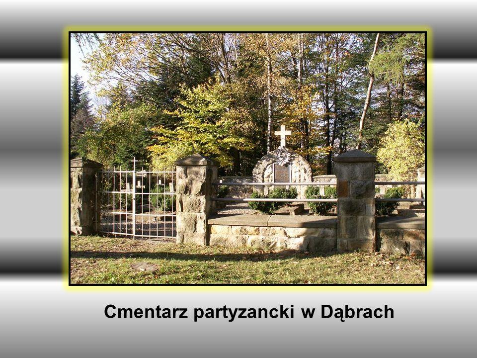 Cmentarz partyzancki w Dąbrach