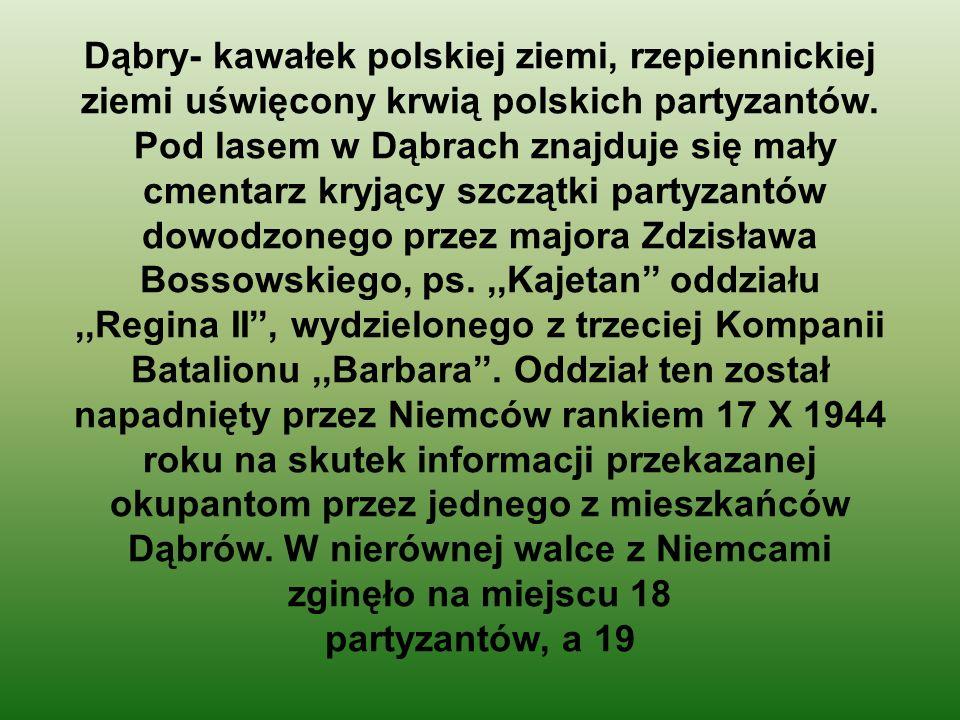Dąbry- kawałek polskiej ziemi, rzepiennickiej ziemi uświęcony krwią polskich partyzantów. Pod lasem w Dąbrach znajduje się mały cmentarz kryjący szczą