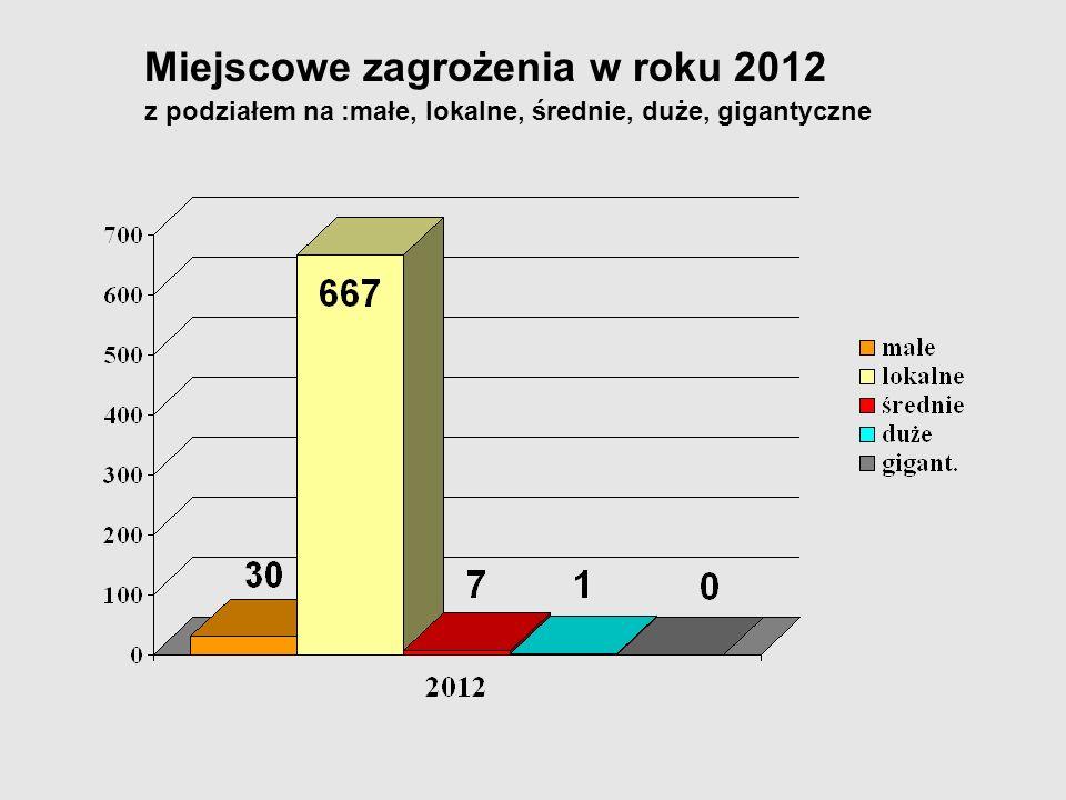 Miejscowe zagrożenia w roku 2012 z podziałem na :małe, lokalne, średnie, duże, gigantyczne