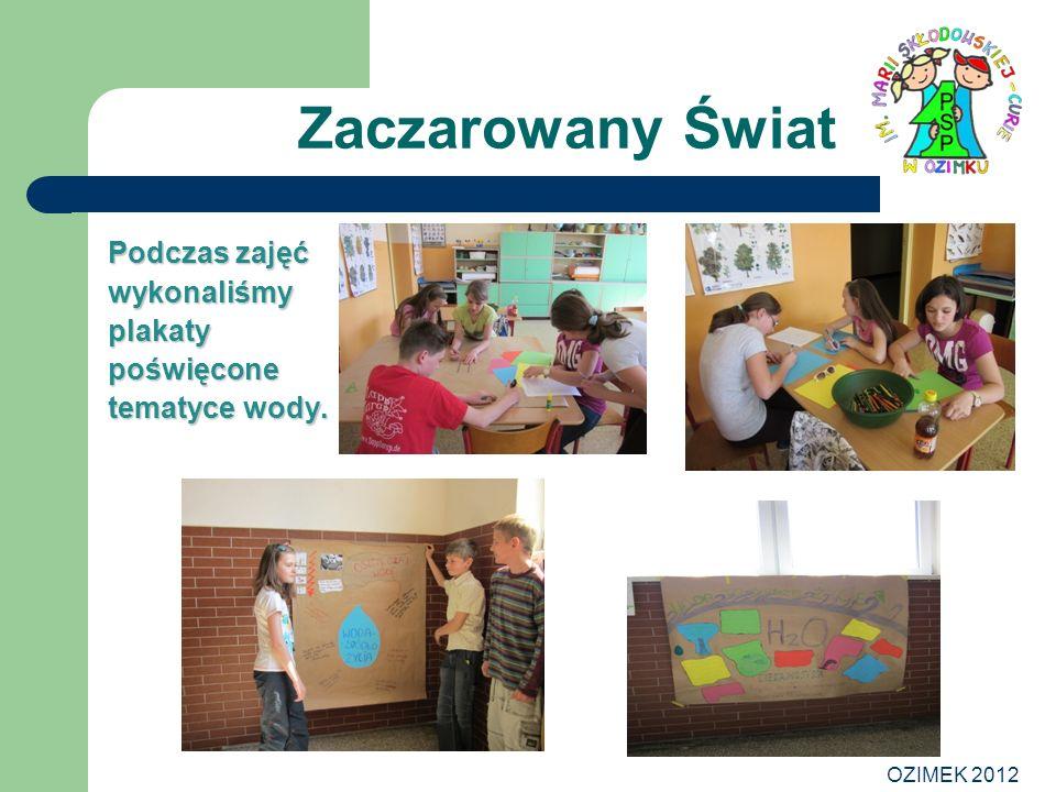 OZIMEK 2012 Zaczarowany Świat Podczas zajęć wykonaliśmy plakaty poświęcone tematyce wody.