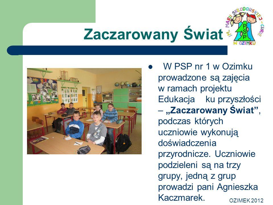 OZIMEK 2012 Zaczarowany Świat W PSP nr 1 w Ozimku prowadzone są zajęcia w ramach projektu Edukacja ku przyszłości – Zaczarowany Świat, podczas których