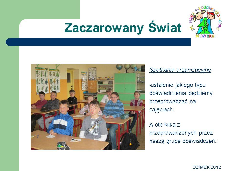 OZIMEK 2012 Zaczarowany Świat Spotkanie organizacyjne ustalenie jakiego typu doświadczenia będziemy przeprowadzać na zajęciach. A oto kilka z przeprow