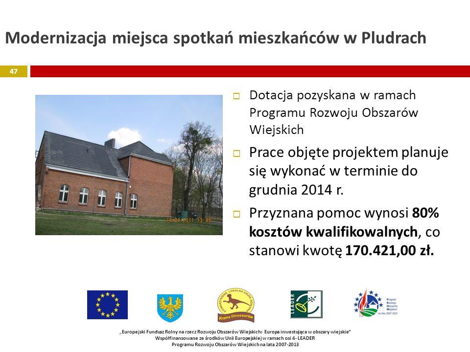 Modernizacja miejsca spotkań mieszkańców w Pludrach Dotacja pozyskana w ramach Programu Rozwoju Obszarów Wiejskich Prace objęte projektem planuje się