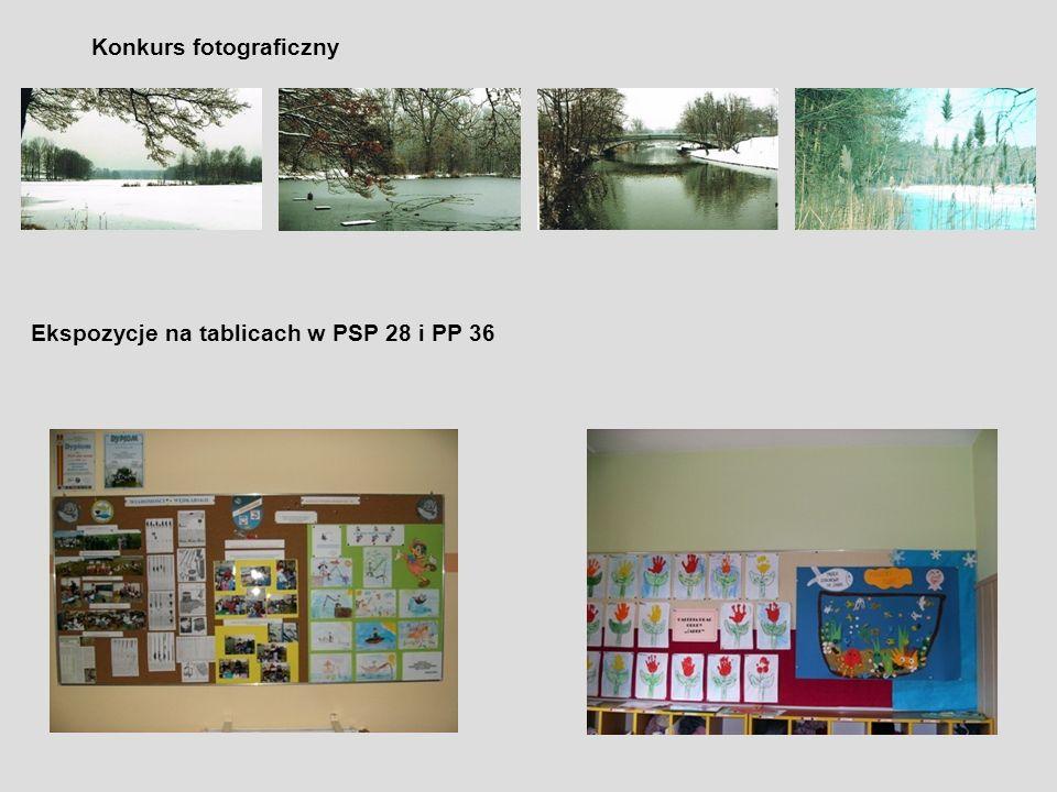 Konkurs fotograficzny Ekspozycje na tablicach w PSP 28 i PP 36