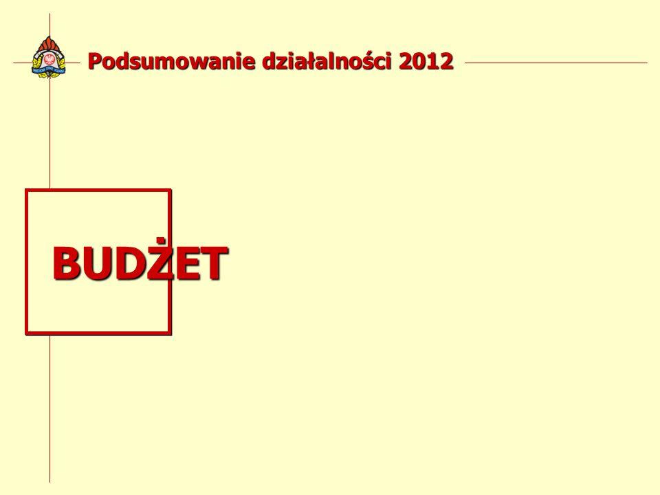 Podsumowanie działalności 2012 BUDŻET