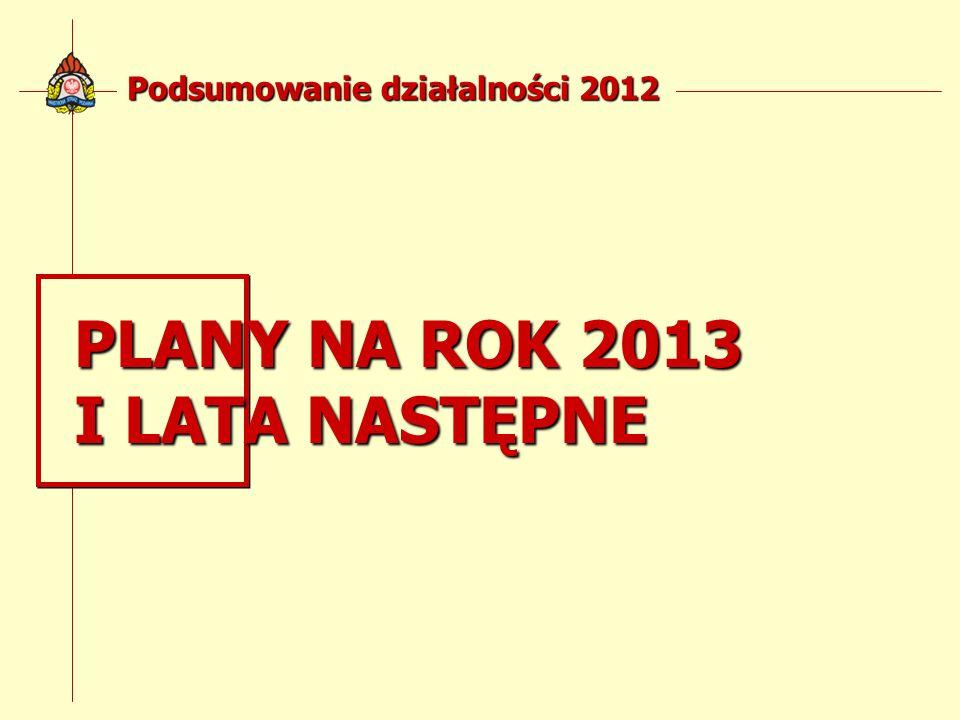 Podsumowanie działalności 2012 PLANY NA ROK 2013 I LATA NASTĘPNE