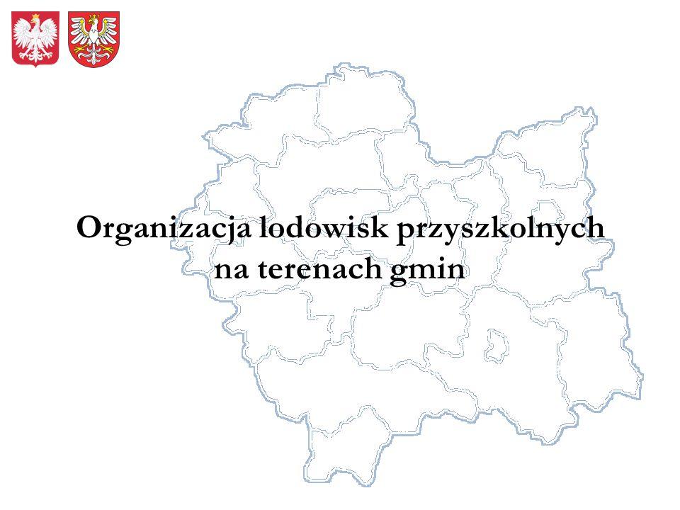 Organizacja lodowisk przyszkolnych na terenach gmin