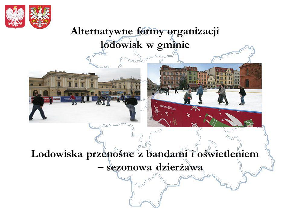 Alternatywne formy organizacji lodowisk w gminie Lodowiska przenośne z bandami i oświetleniem – sezonowa dzierżawa