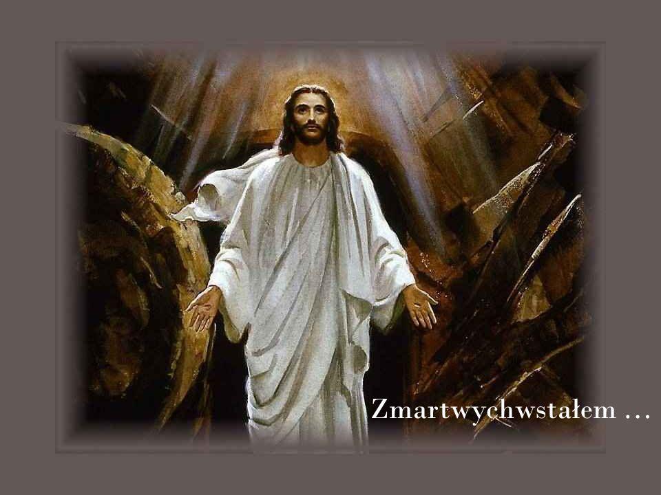 Niech zmartwychwstały Chrystus obudzi w nas to, co jeszcze u ś pione o ż ywi, co jest martwe a ś wiatło Jego Słowa niech prowadzi nas przez ż ycie do wieczno ś ci.