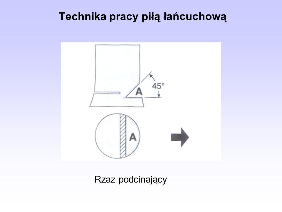 Rzaz podcinający Technika pracy piłą łańcuchową