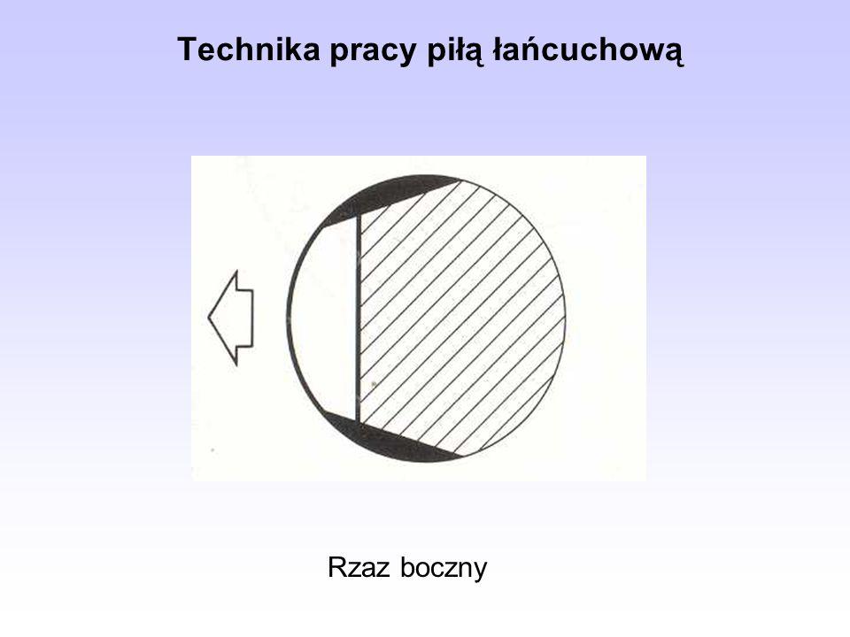 Rzaz boczny Technika pracy piłą łańcuchową