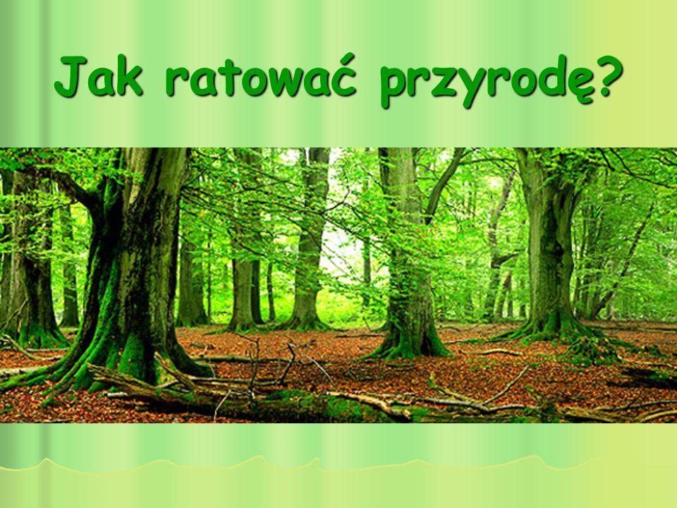 Jak ratować przyrodę?