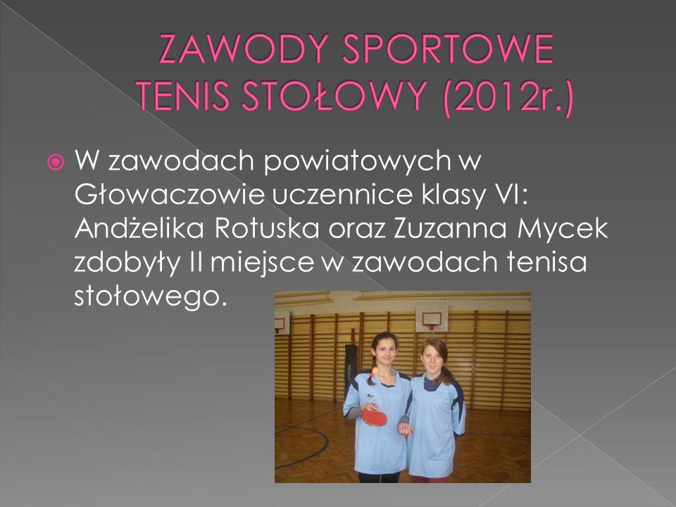 W zawodach powiatowych w Głowaczowie uczennice klasy VI: Andżelika Rotuska oraz Zuzanna Mycek zdobyły II miejsce w zawodach tenisa stołowego.