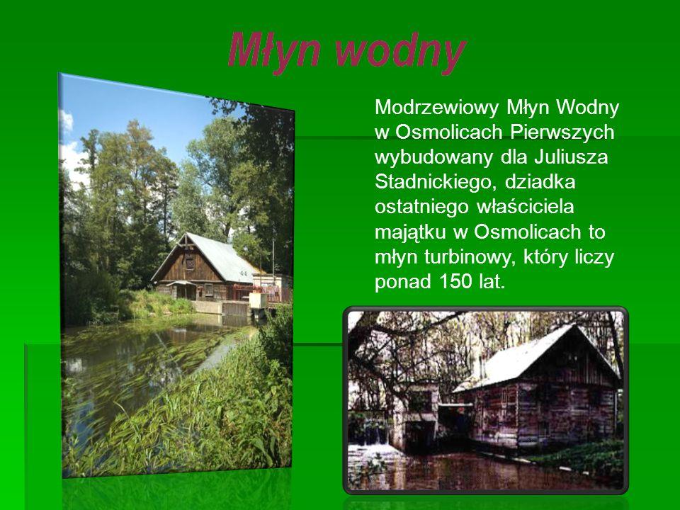 Modrzewiowy Młyn Wodny w Osmolicach Pierwszych wybudowany dla Juliusza Stadnickiego, dziadka ostatniego właściciela majątku w Osmolicach to młyn turbinowy, który liczy ponad 150 lat.