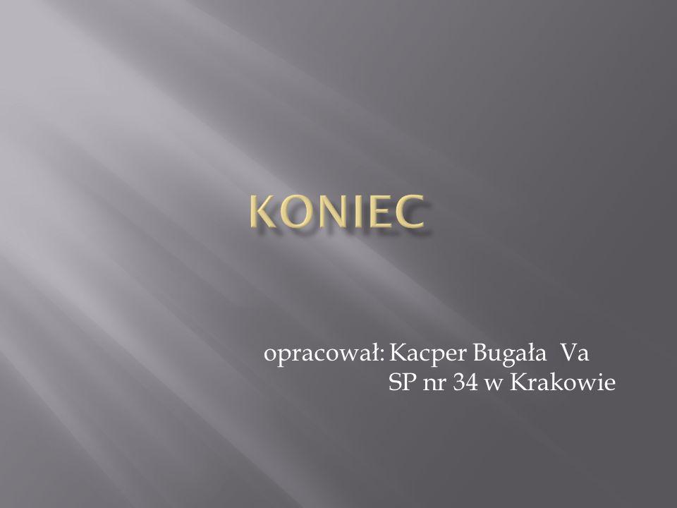 opracował: Kacper Bugała Va SP nr 34 w Krakowie