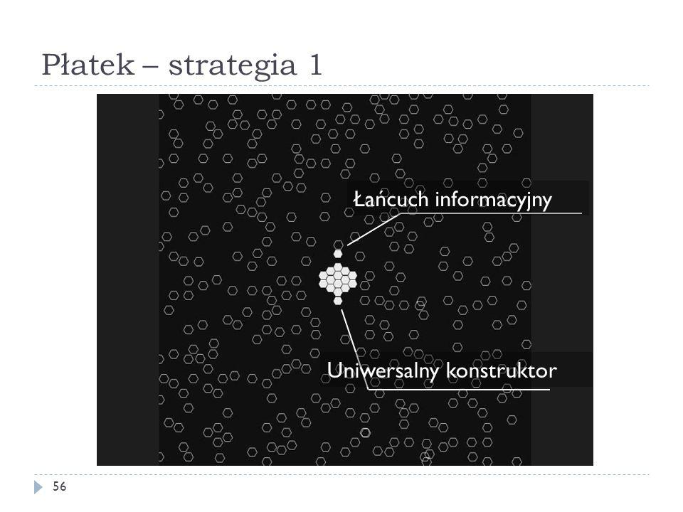 Płatek – strategia 1 56 Łańcuch informacyjny Uniwersalny konstruktor