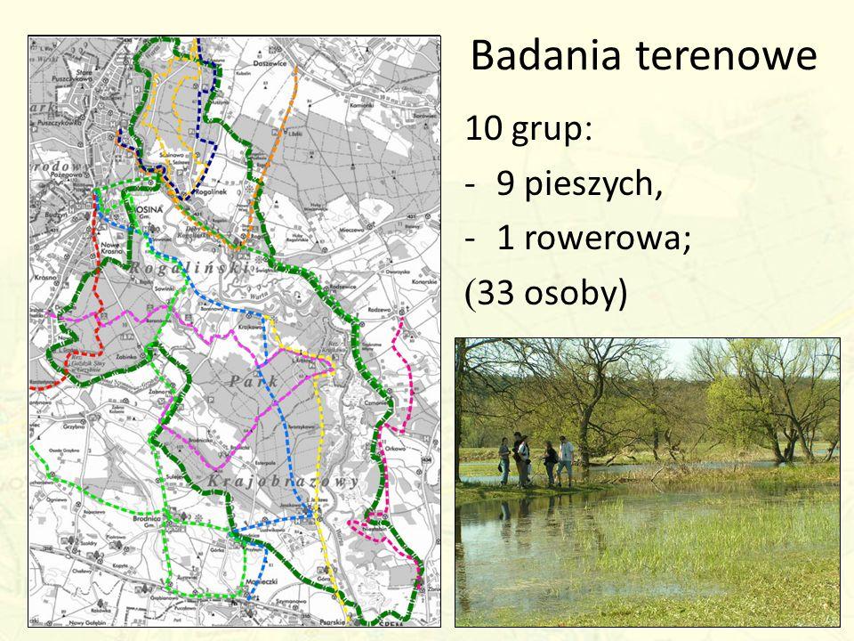 Badania terenowe 10 grup : -9 pieszych, -1 rowerowa; ( 33 osoby)