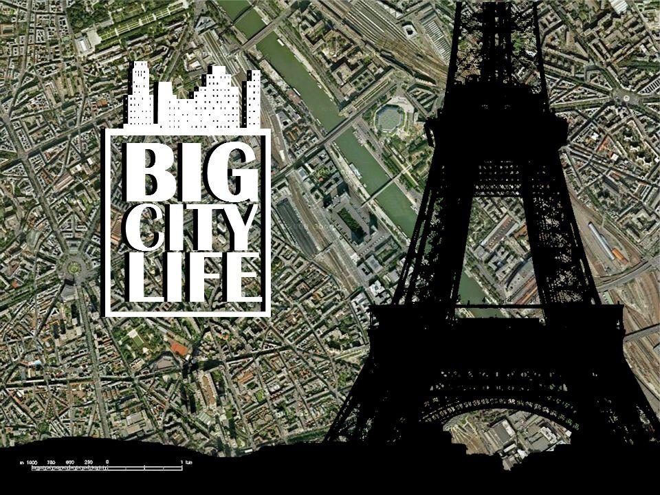 Z naszego portfolio wybraliśmy tylko te witryny które są idealnie dopasowane do grupy docelowej pożądanej dla Big City Life.