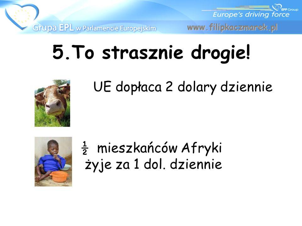 5.To strasznie drogie! UE dopłaca 2 dolary dziennie www.filipkaczmarek.pl ½ mieszkańców Afryki żyje za 1 dol. dziennie