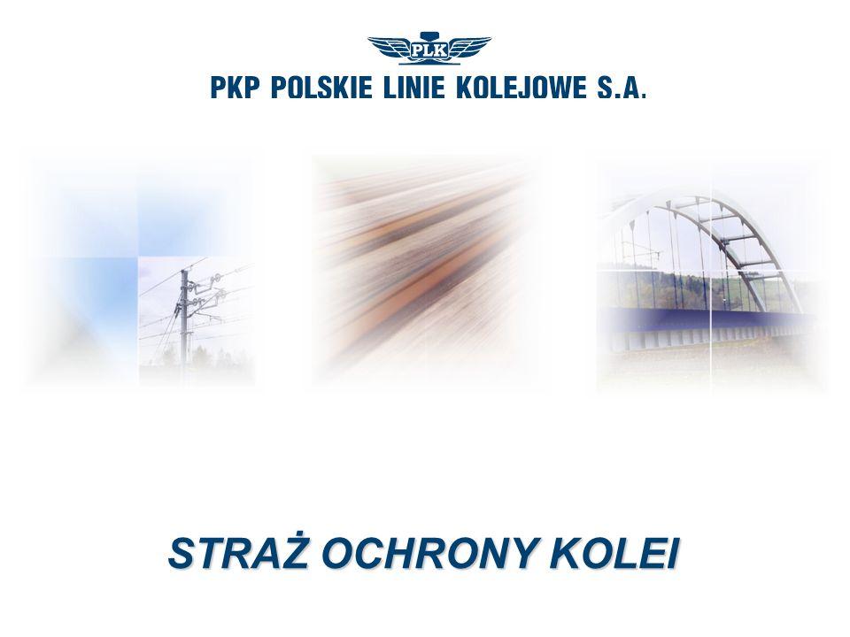 www.plk-sa.pl PRZEWOZY PASAŻERSKIE PKP Przewozy Regionalne Sp.