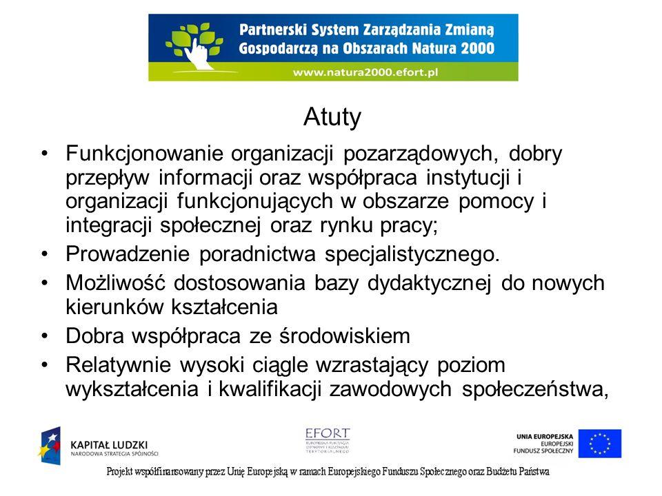 Atuty Funkcjonowanie organizacji pozarządowych, dobry przepływ informacji oraz współpraca instytucji i organizacji funkcjonujących w obszarze pomocy i