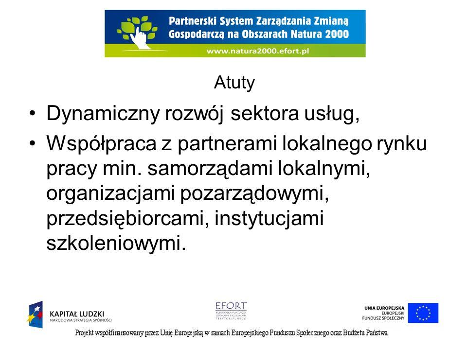 Atuty Dynamiczny rozwój sektora usług, Współpraca z partnerami lokalnego rynku pracy min. samorządami lokalnymi, organizacjami pozarządowymi, przedsię