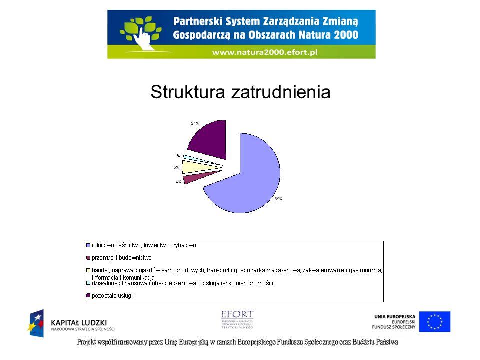 Pracodawcy Według danych GUS na koniec grudnia 2011 r.