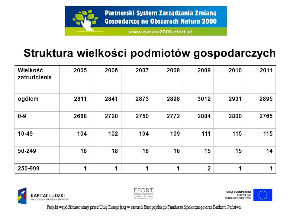 Atuty Dynamiczny rozwój sektora usług, Współpraca z partnerami lokalnego rynku pracy min.