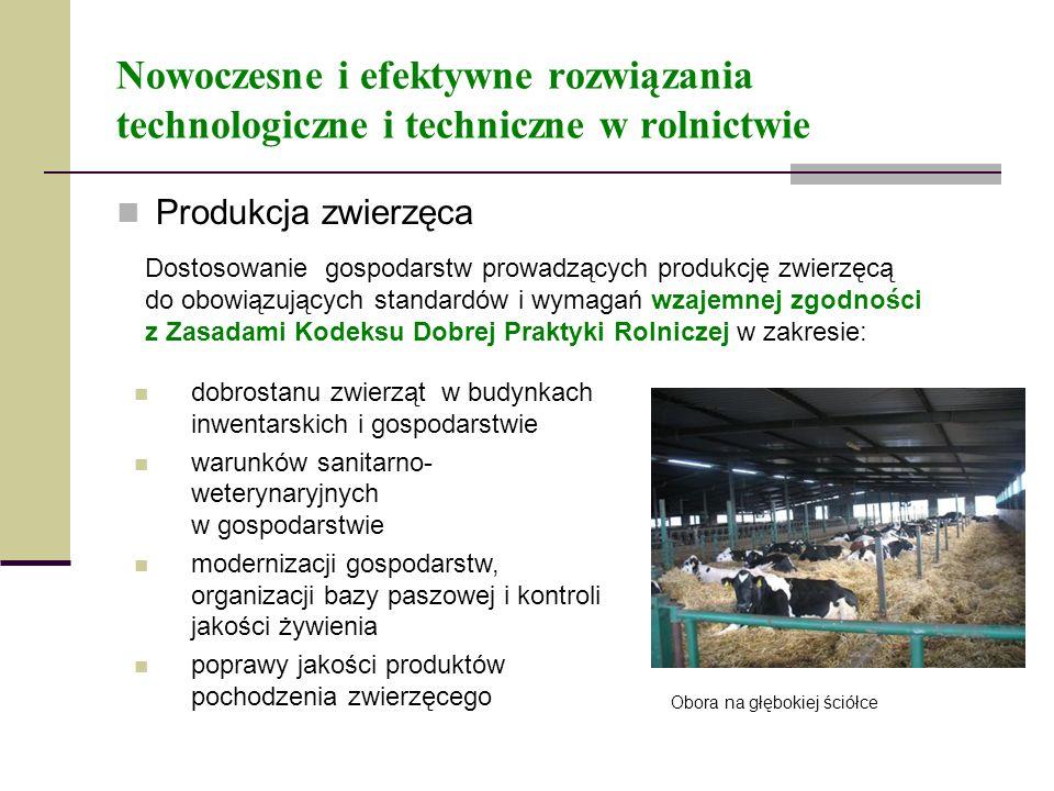 Nowoczesne i efektywne rozwiązania technologiczne i techniczne w rolnictwie Produkcja zwierzęca Dostosowanie gospodarstw prowadzących produkcję zwierz