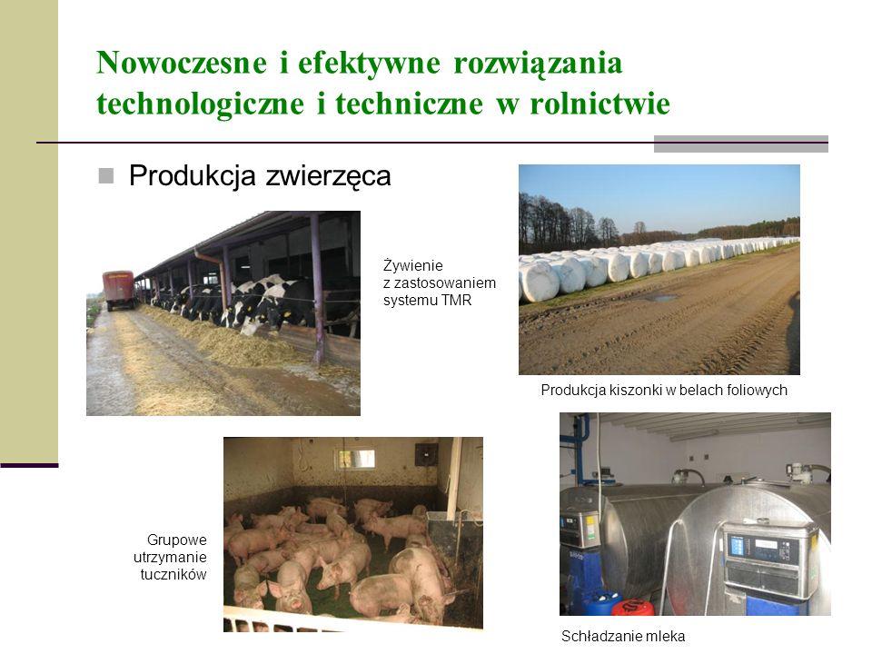 Nowoczesne i efektywne rozwiązania technologiczne i techniczne w rolnictwie Produkcja zwierzęca Produkcja kiszonki w belach foliowych Żywienie z zasto