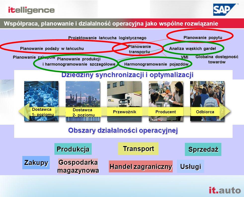 it.auto Planowanie popytu Planowanie podaży w łańcuchu Planowanie produkcji i harmonogramowanie szczegółowe Planowanietransportu VMI Globalna dostępno
