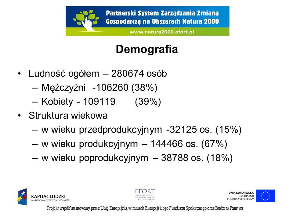 Demografia Ludność ogółem – 280674 osób –Mężczyźni -106260 (38%) –Kobiety - 109119(39%) Struktura wiekowa –w wieku przedprodukcyjnym -32125 os. (15%)