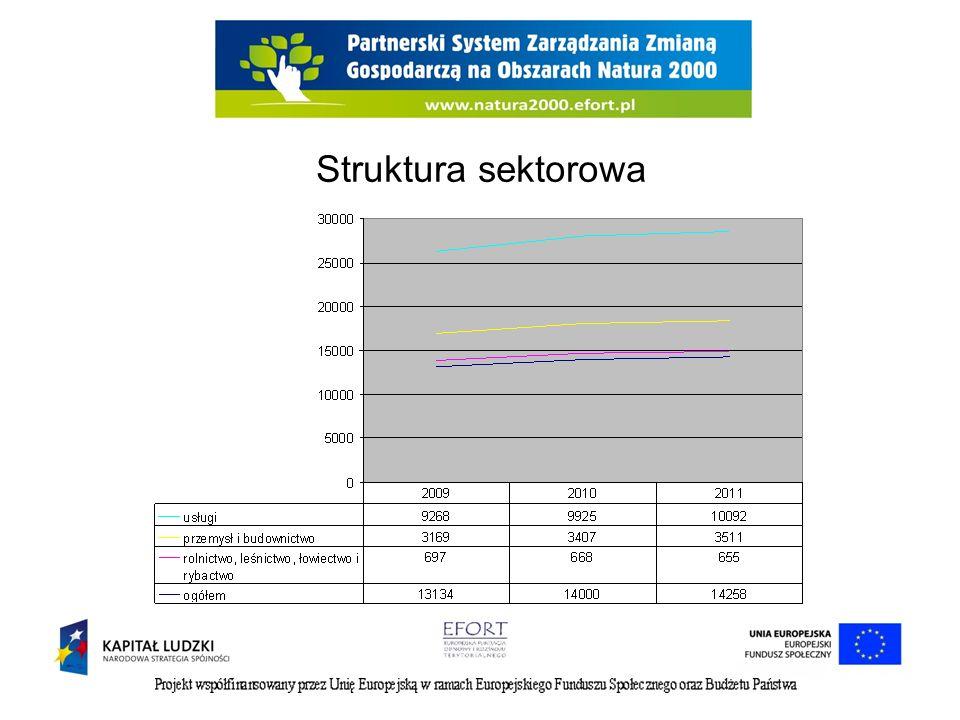 Struktura sektorowa