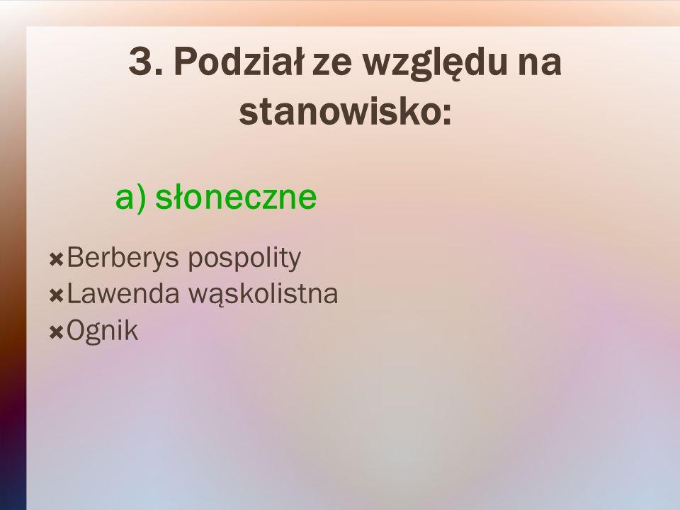 3. Podział ze względu na stanowisko: a) słoneczne Berberys pospolity Lawenda wąskolistna Ognik
