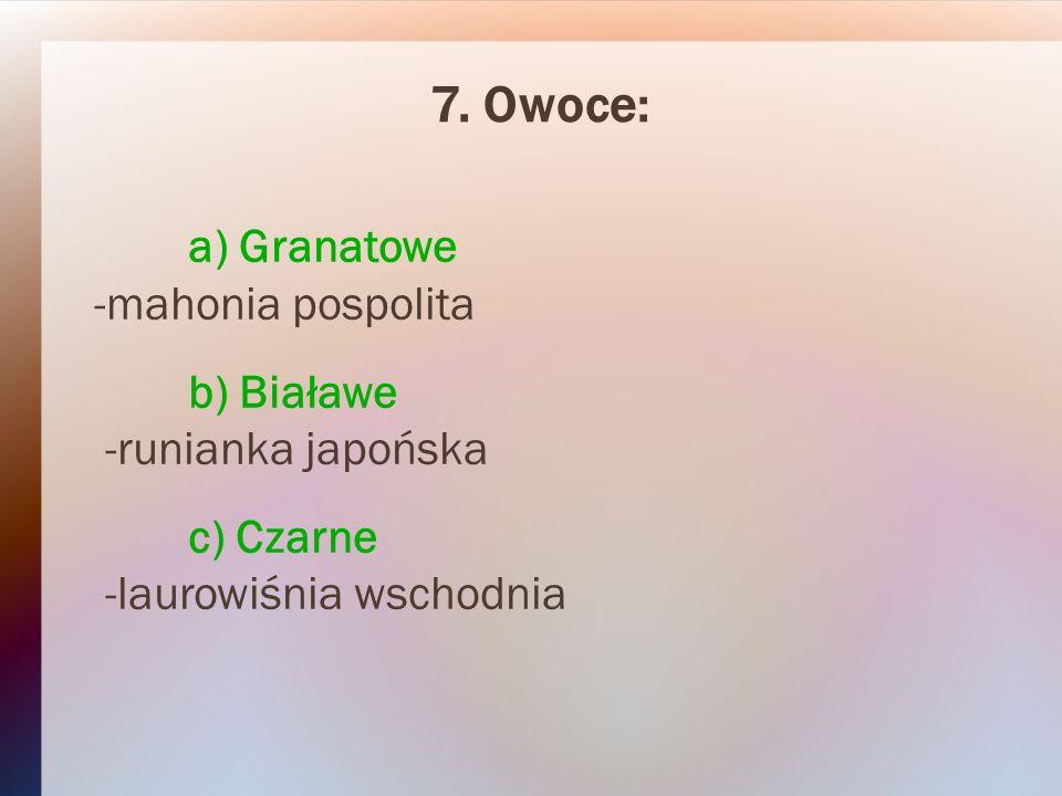 7. Owoce: a) Granatowe -mahonia pospolita b) Białawe -runianka japońska c) Czarne -laurowiśnia wschodnia