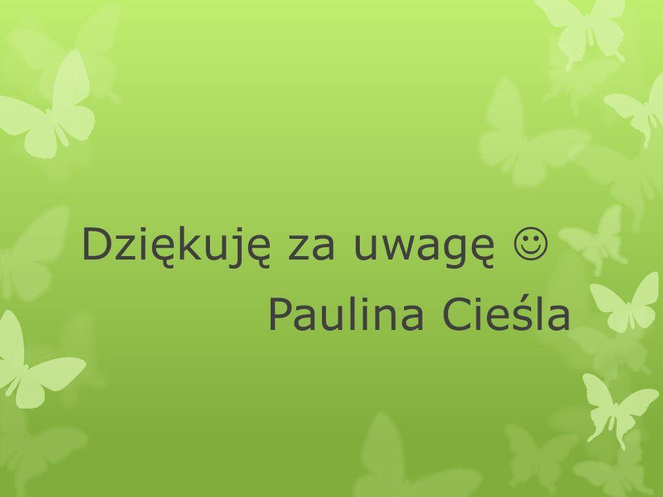 Dziękuję za uwagę Paulina Cieśla