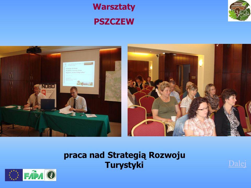 Warsztaty PSZCZEW Dalej praca nad Strategią Rozwoju Turystyki