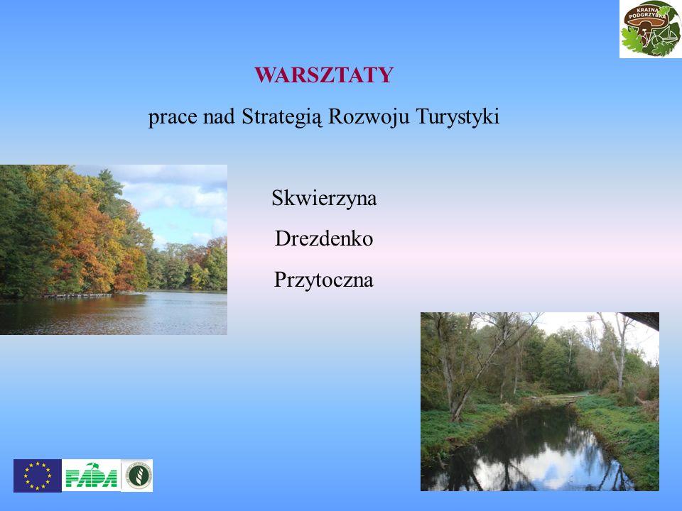 WARSZTATY prace nad Strategią Rozwoju Turystyki Skwierzyna Drezdenko Przytoczna