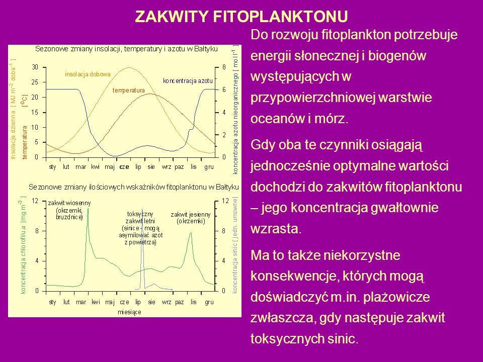 ZAKWITY FITOPLANKTONU Do rozwoju fitoplankton potrzebuje energii słonecznej i biogenów występujących w przypowierzchniowej warstwie oceanów i mórz.