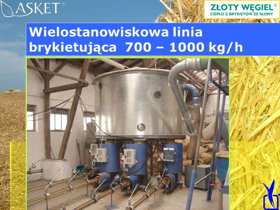 Wielostanowiskowa linia brykietująca 700 – 1000 kg/h